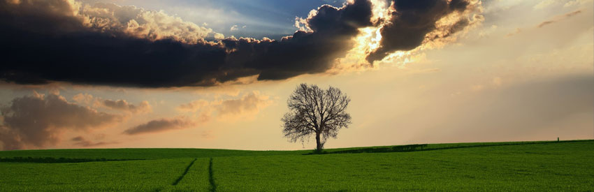 Maalämpöpumput - energiaa luonnosta